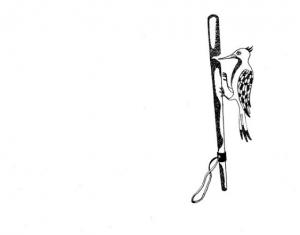 ASCO logo Cecilia1