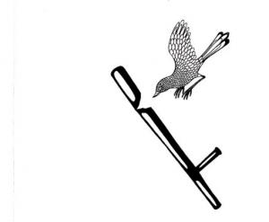 ASCO logo Cecilia3