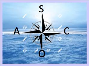 ASCO logo Patrizia Panatta